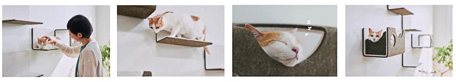 猫壁の使用イメージ図